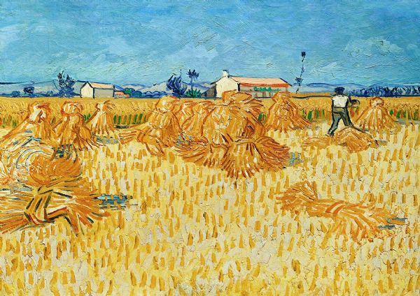 Van Gogh, Vincent: Harvest in Provence. Fine Art Print/Poster. Sizes: A4/A3/A2/A1 (003913)